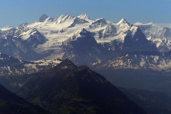 Gipfelblick - Berner Alpen