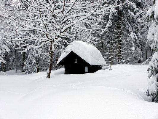 Schutzhütte am Finsterbühl - 1160 M