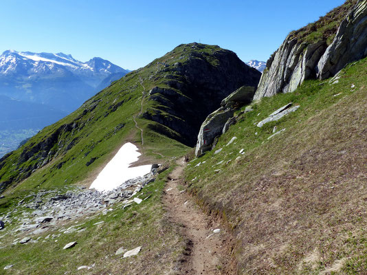 Pfad auf der Kammhöhe - Kurz vor dem Gipfel
