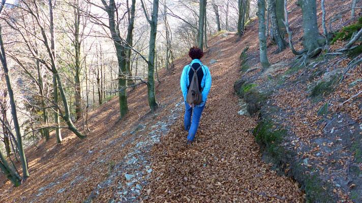 Bergpfad Sentiero 1