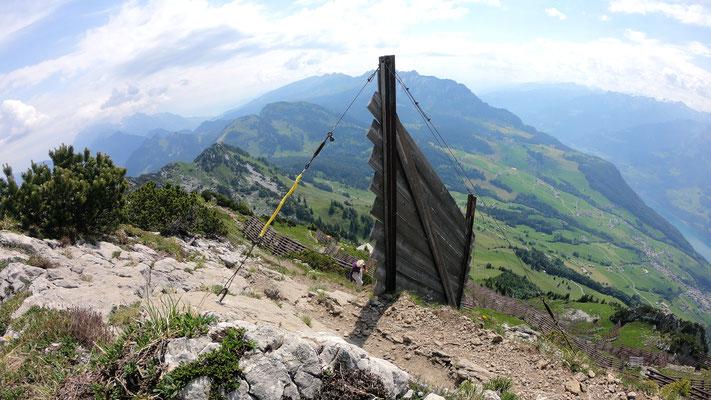 Gipfelblick - Alpstein und Kurfirsten
