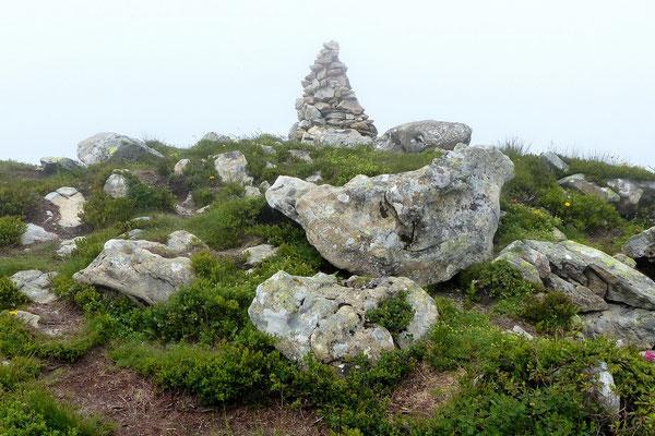 Am Gipfel der Stäfeliflue - 1922 M
