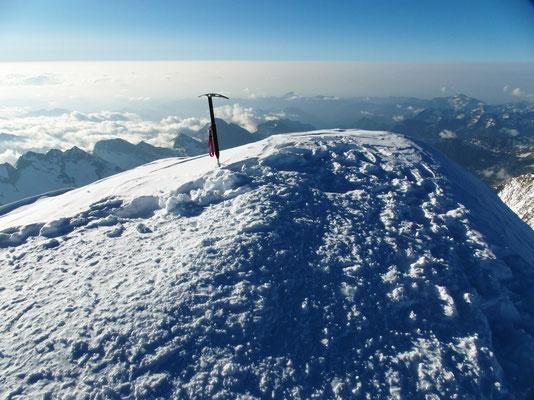 Ludwigshöhe - Gipfelblick nach N