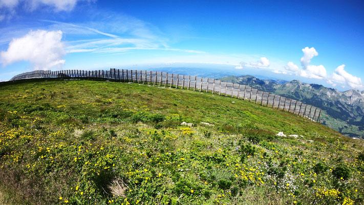 Lawinenverbauungen am Gipfel des Hinderrugg - 2306 M