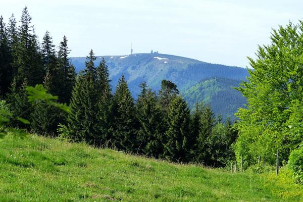 Blick vom Rotecksattel auf den Felberg