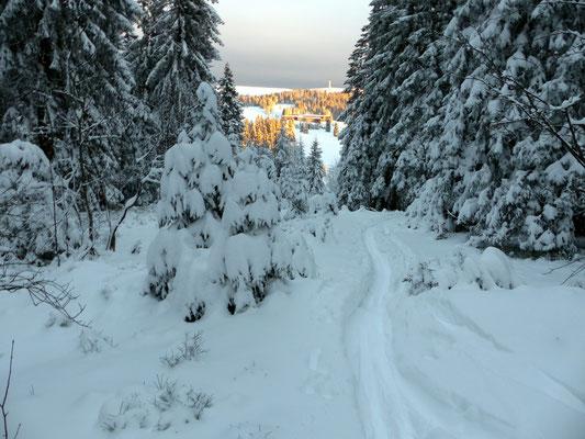 Abstieg - Nordflanke