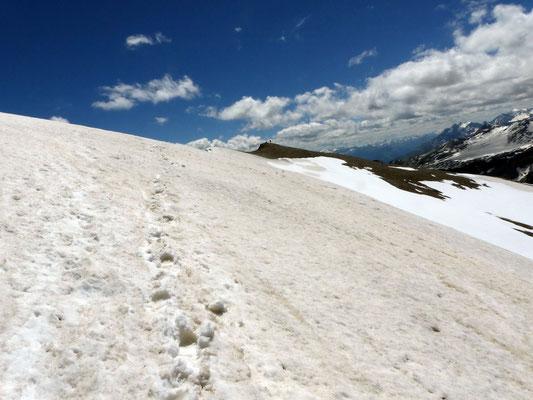 Gipfel des Piz Segnas - 3099 M