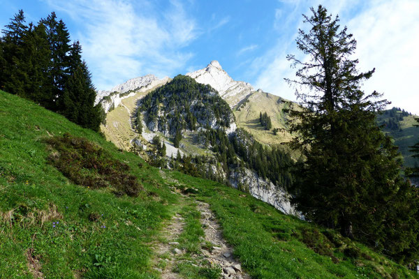 Erster Blick - Gipfel des Esel