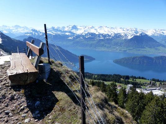 Am Gipfel des Rigi-Rotstock - 1659 M
