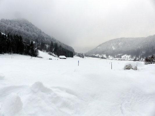 Blick von Menzenschwand-Hinterdorf ins Krunkelbachtal