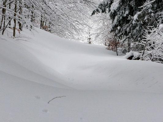 Oberer Bergpfad