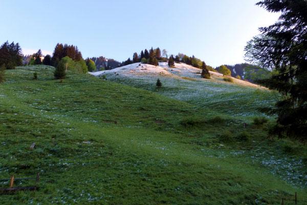 Schneefallgrenze - Wiesenberg