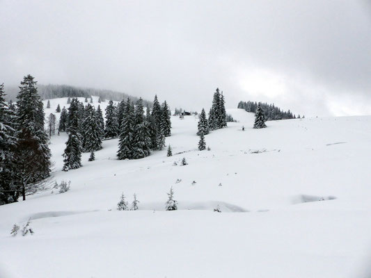 Hochalmen - Erster Blick zur Krunkelbachhütte