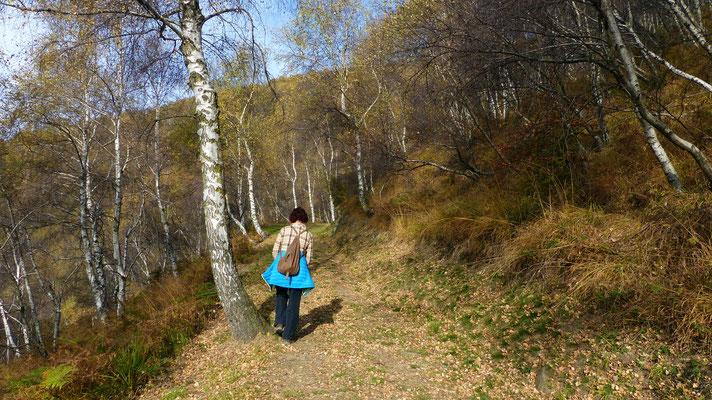 Weg entlang der Linea Cadorna