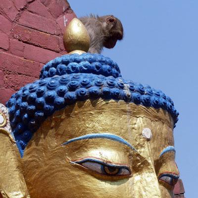 Affentempel Swayambhunath