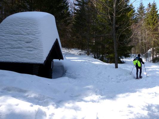 Zurück an der Finsterbühl-Schutzhütte