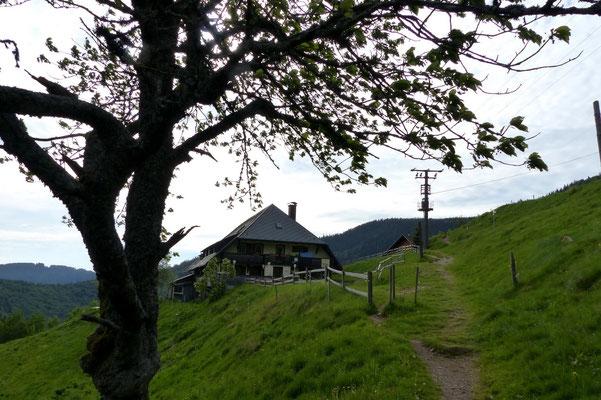 Höfener Hütte - 980 M
