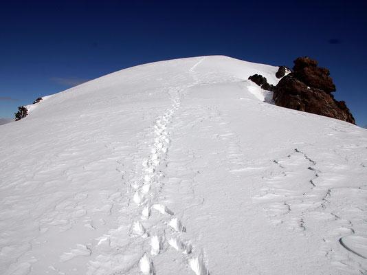 Einstieg zum Gipfelgrat - P. 3972