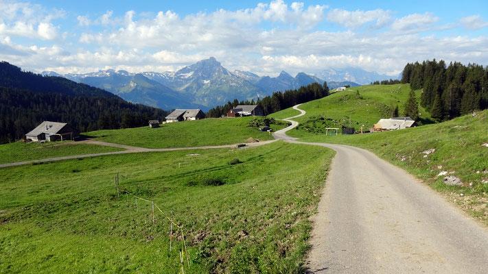 Abstieg nach Arvenbühl