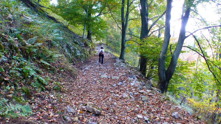 AV-Weg - Zwischen Monteggia und Casere