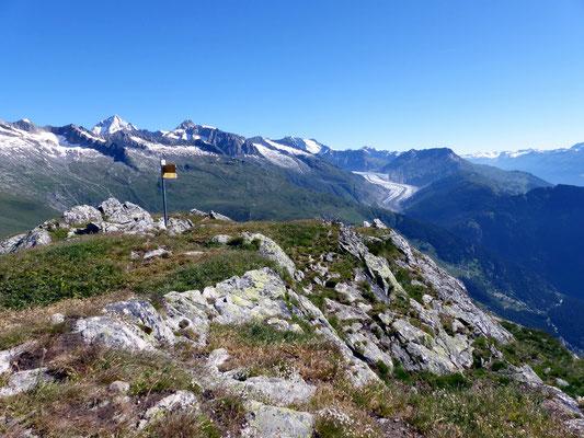 Gipfelblick - Aletschregion