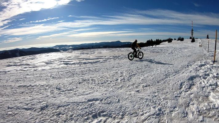 Am Feldberg-Gipfelplateau