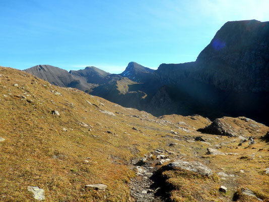 Alpe vor Tierwang - 2440 M