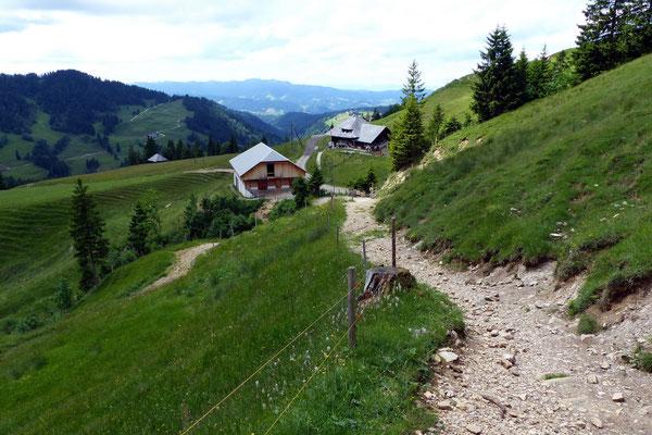 Abstieg - Mittlist-Hütten vor Gfellen - 1230 M