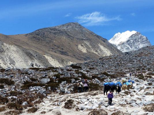 Awi Peak 5245 M - Von Doughla
