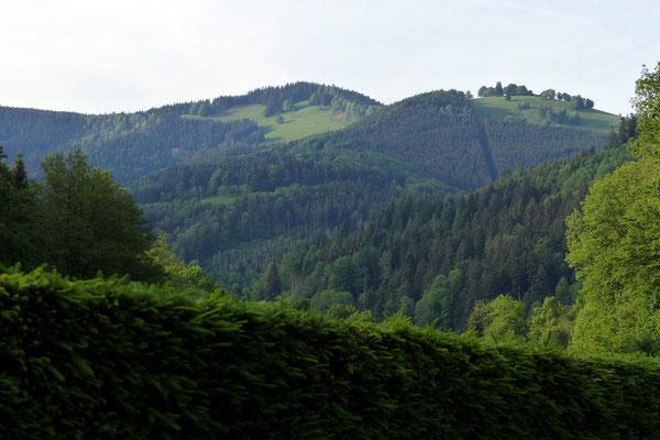 Blick von Himmelreich auf den Hinterwaldkopf