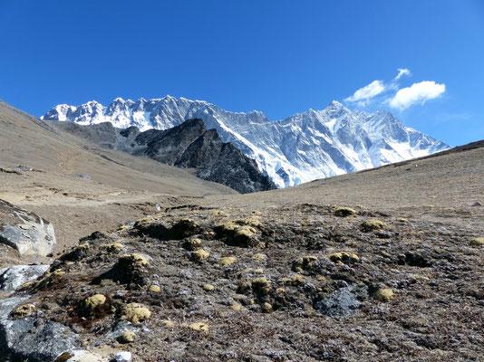 Chukhung Ri 5550 M - Vor Nuptse und Lhotse