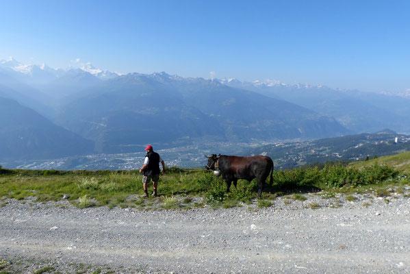 Blick von der Alpe Prabaron ins Rhonetal