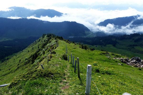 Blick vom Gipfel des Rickhubel zum Glaubenbergpass