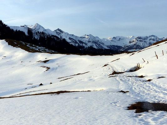 Schwyzer Alpenpanorama