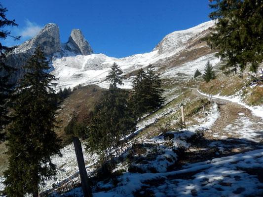 Alpe Les Crosses