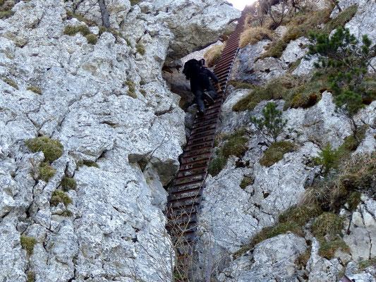 Nordseitiger Abstieg über eine Leiter
