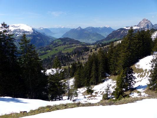 Blick gen West zum Vierwaldstättersee