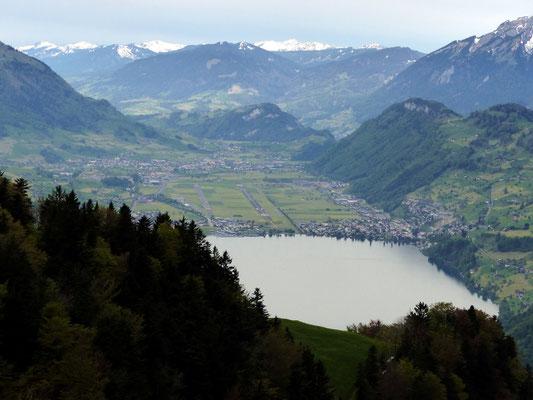 Blick gen Süd - Beckenried