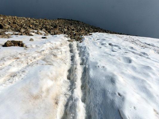 Abstieg - Nordflanke des Piz Trovat