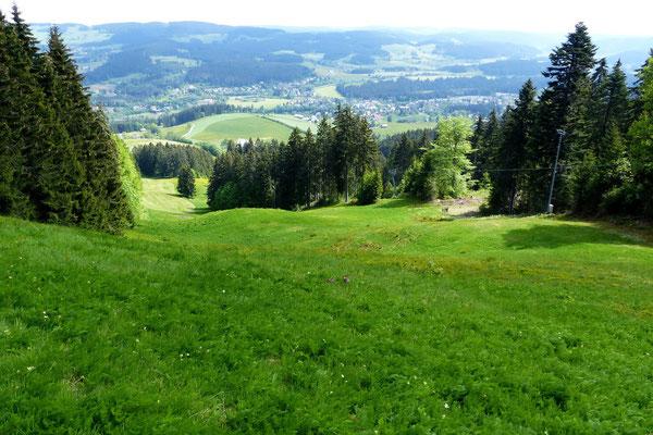 Blick vom Gipfel des Windeckkopf - 1208 M