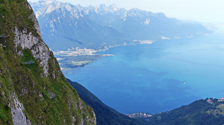 Gipfelblick: Lac Léman