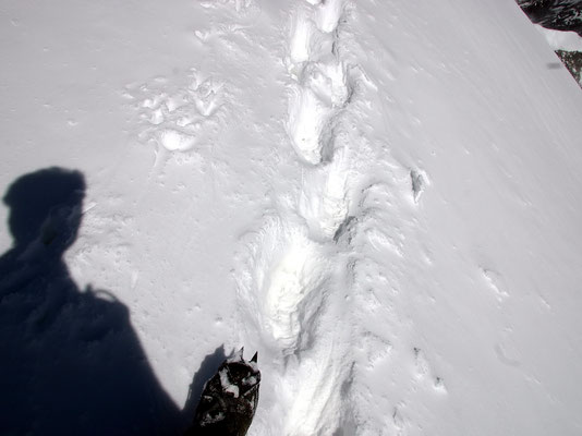 Foto-Stop auf dem Gipfelgrat
