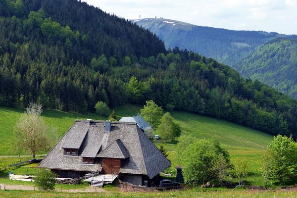 Hinterwaldkopfhütte vor Feldberg