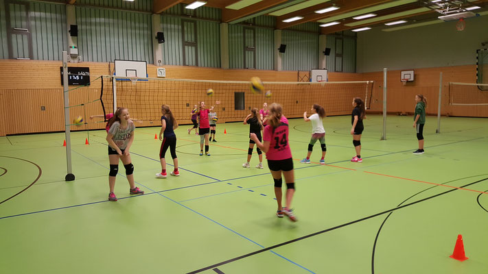 Volleyball macht Spass