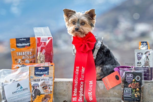 03.02.2018 - Aika nach der DogDance Prüfung in Winterthur an der intern. Hundemesse