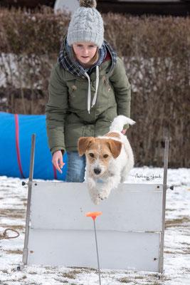 03.03.2018 - Anna und Ally im Training. Sprung, Warten, Sprung.