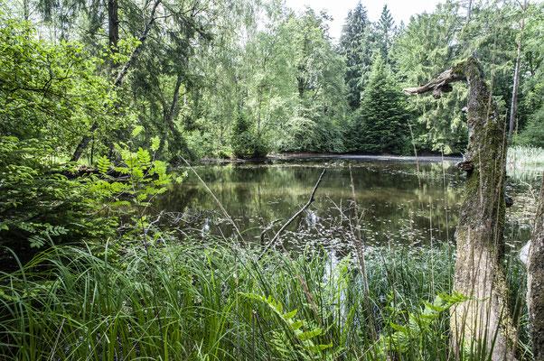 der See neben dem Campgelände
