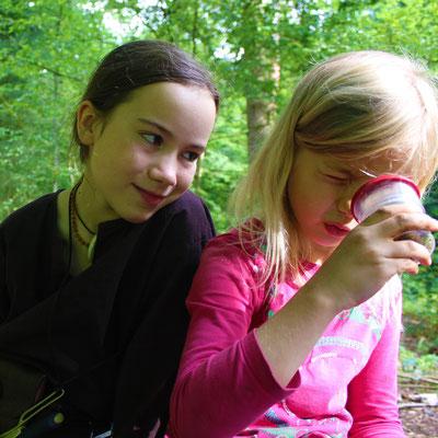 Sommercamp Habichtswald