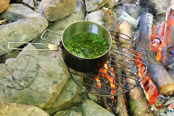 Salbe kochen, Sommercamp Habichtswald