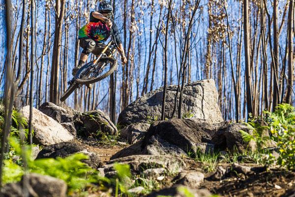 Stephan_Peters_Mountainbike_18